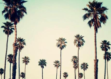 Decouverte Etsy Californie Sous Lobjectif Bre L Vlfc5w