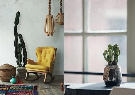 Detail Deco Cactus Maison L 0zr7kz