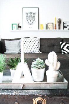 Detail Deco Cactus Maison L 56jkj4