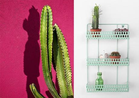 Detail Deco Cactus Maison L 9zumem